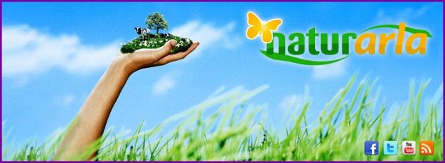 Arla Foods Y Pieza Gráfica Exterior, Yovana Comins